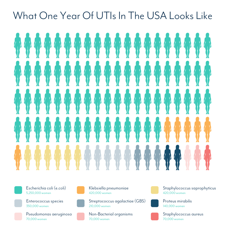 What Causes A Urinary Tract Infection - One Year Of UTIs In The USA By Pathogen