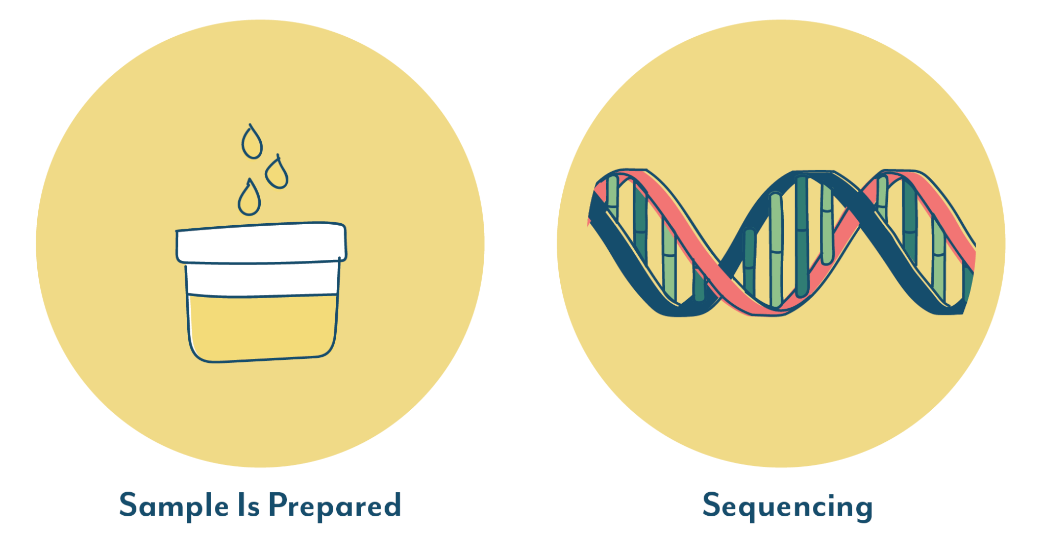 Next Generation Sequencing steps by Aperiomics