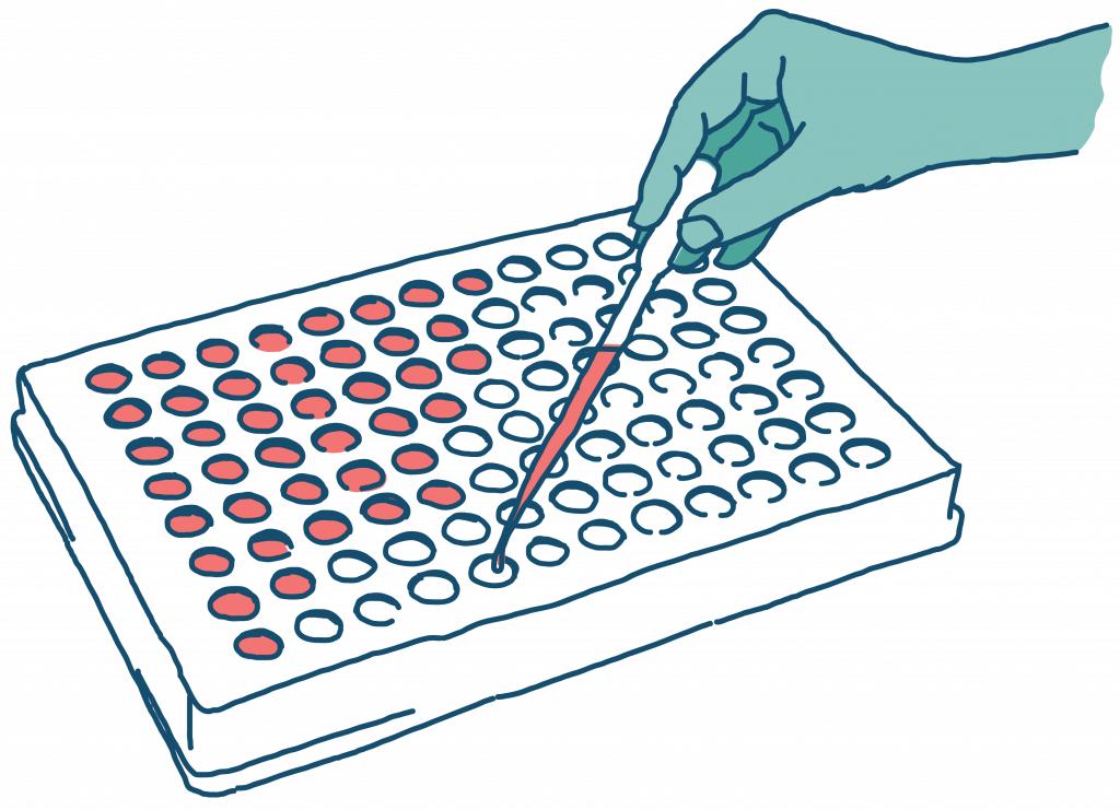Pooled antibiotic susceptibility testing